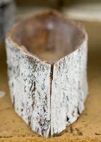 Birch Cylinder